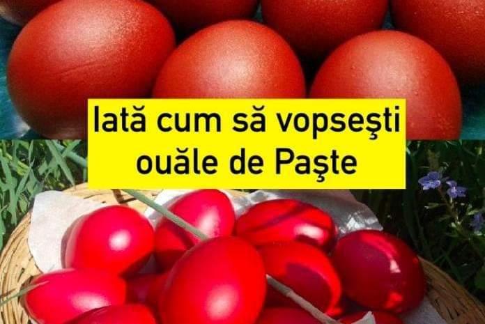 Iată cum să vopseşti ouăle de Paşte în mod sănătos