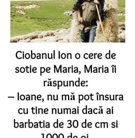 Ciobanul Ion o cere de sotie pe Maria, Maria îi răspunde:– Ioane, nu mă pot însura cu tine numai dacă ai barbatia de 30 de cm si 1000 de oi.
