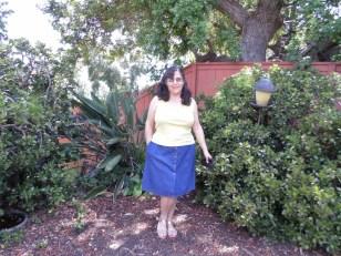 Denim Skirt casual