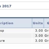 Spring Semester Summary