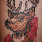 stitchpit-tattoo-hamburg-10123-deer-neotraditional