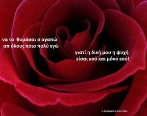 να το  θυμάσαι σ αγαπώ  απ όλους ποιο πολύ εγώ   γιατί η δική μου η ψυχή   είσαι εσύ και μόνο εσύ!