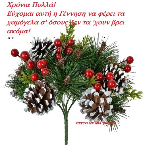 Ευχές Χριστουγέννων. Χρόνια πολλά  σε όλους σας!!!