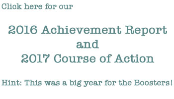 2016 Achievement Report and 2017 Course of Action