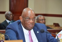 Police Commissioner Delroy Richards Sr. testifies at Thursday's budget hearing.