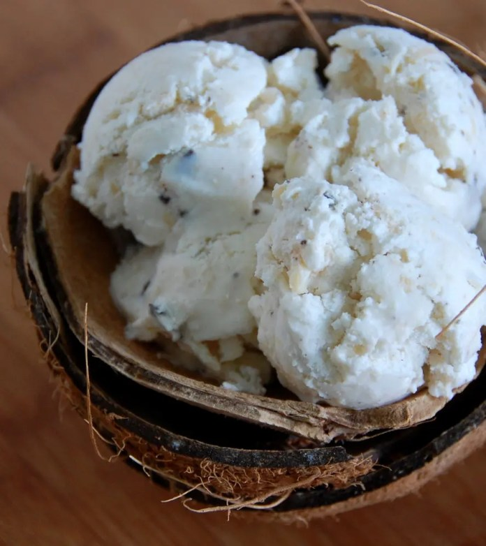 coconut_ice_cream