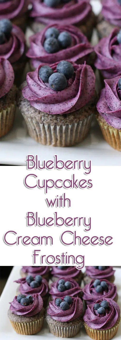 This blueberry cupcake is so striking, people will take notice. The special magic ingredient is freeze dried blueberries!
