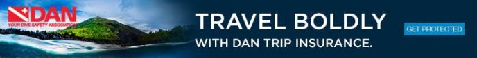 dan tRAVEL iNSURANCE bANNER