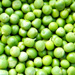 Pea Extract Skin Care