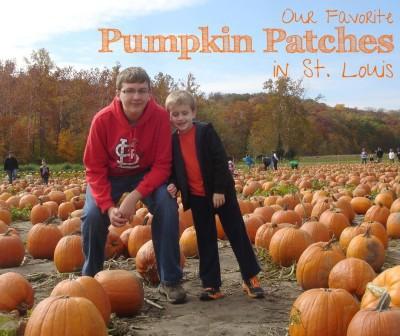 pumpkin patches St. Louis