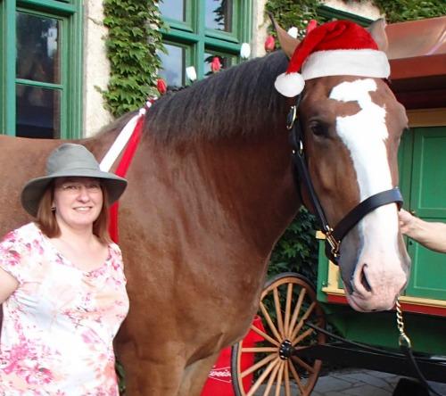Horses Host Toys for Tots at Grant's Farm