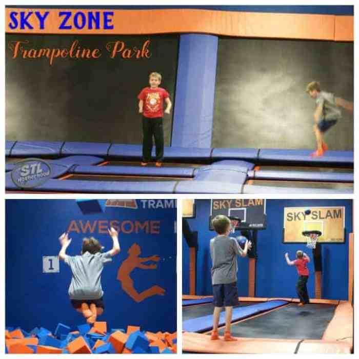 Sky Zone in Fenton