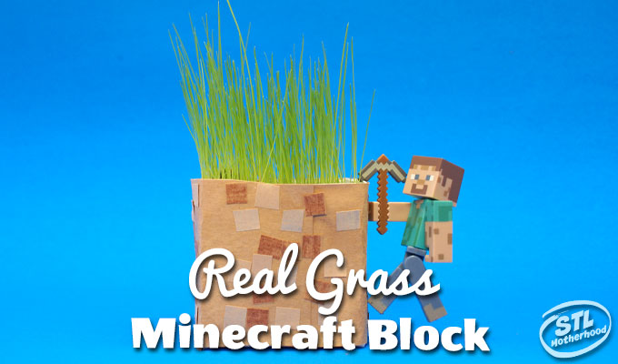 Minecraft for Real: DIY Grass Blocks for Spring