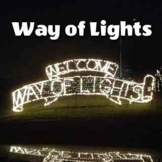 Lights, Camels, Action: Way of Lights