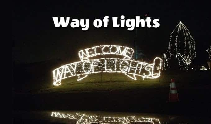 Lights, Camels, Action: Way of Lights