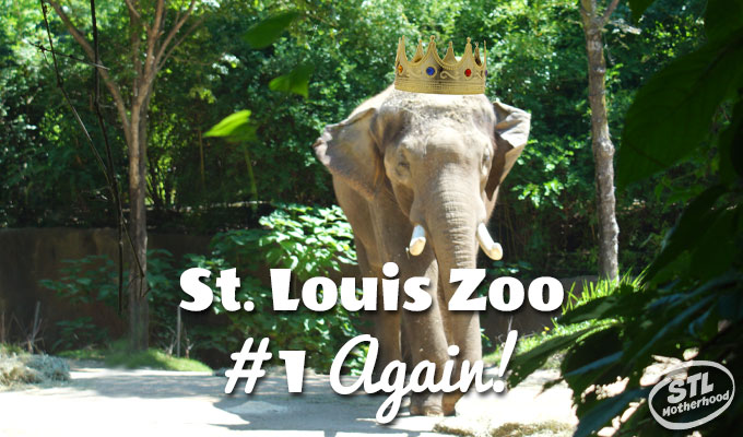 Saint Louis Zoo is #1 AGAIN