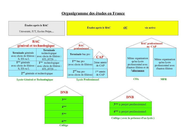 organigramme_site