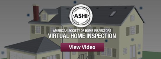 ashi-video-feature