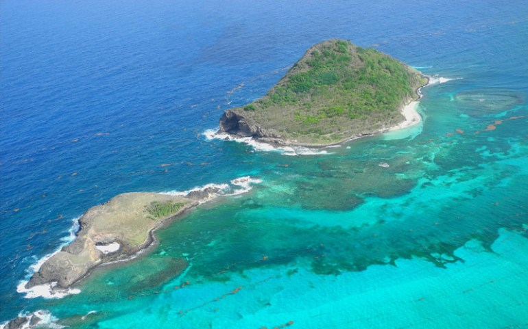 Aerial view of the Maria Islands - (C) Jenny Daltry FFI