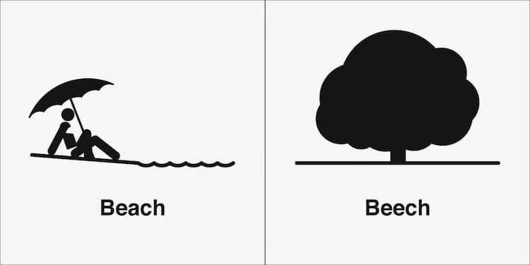 homophone-weakly-beach-beech