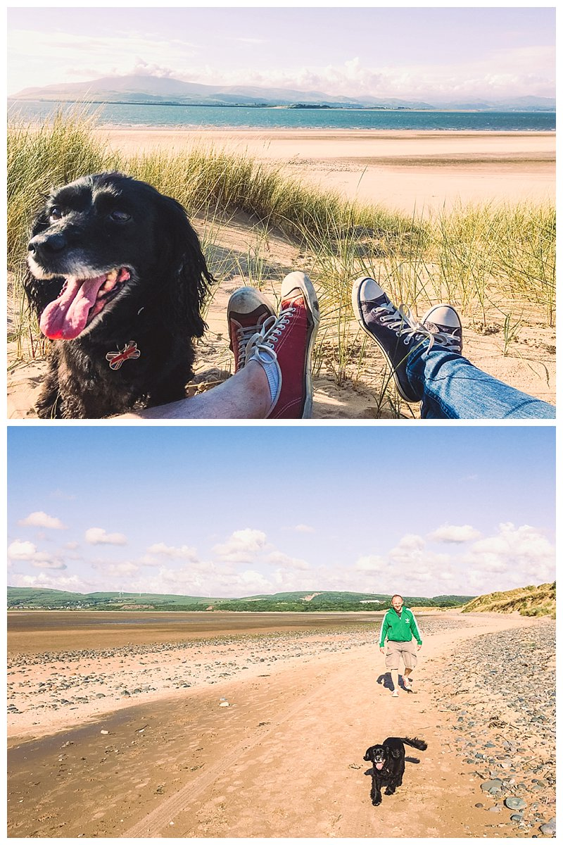 Pet friendly Cumbria