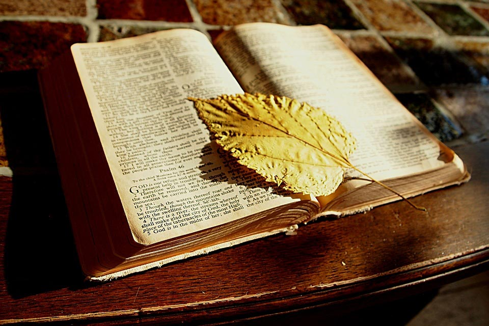 February Adult Forum Schedule & Sunday School Insights