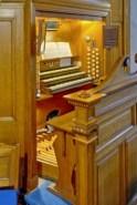 lewis-organ