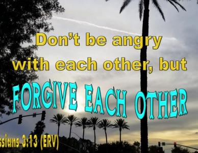 Forgive Each Other – Learn How to Forgive with Love