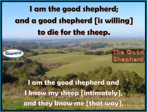 picture for the good shepherd / spiritual appetizers - palo alto, ca