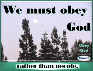 picture for obey god - early moon / spiritual appetizers