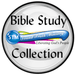 logo for stm bible study collection