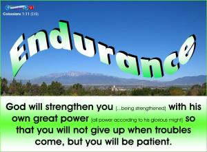 picture for endurance - inland empire