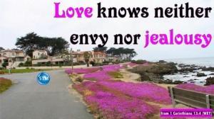 Picture of coastal neighborhood for the jealousy bible study 1 Corinthians 13:4
