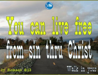 Freedom from Sin and the Law; You Can Have Liberty Through Jesus