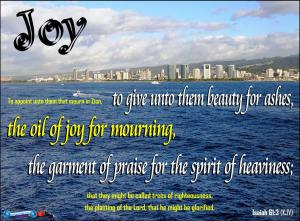 picture for joy - honolulu