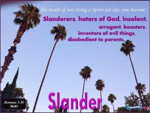 picture for slander - early moon with palm trees