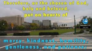 Picture of downtown San Jose, CA for the kindness bs Colossians 3:12