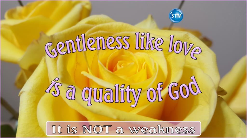 Gentleness; Learn How to Use This Godly Quality Better