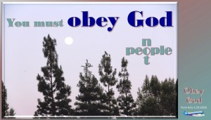 picture of evening moon for the obey god bible lesson