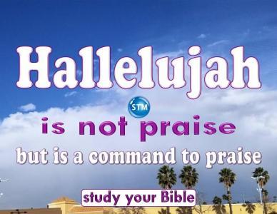Hallelujah, Is It The Highest Praise?