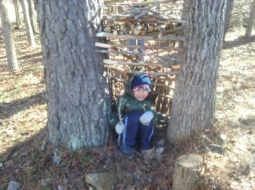 boys tree house 3