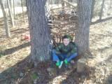 boys tree house 5