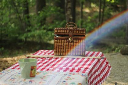 Picnic at Travnik
