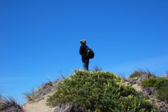 Dave surveys the dunes