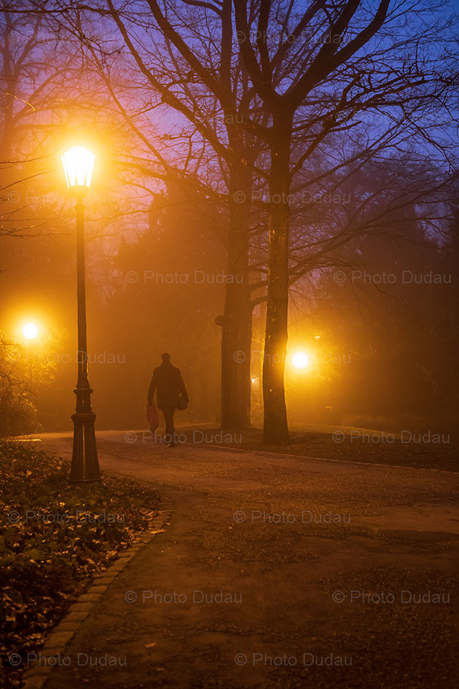 Foggy park at night in Luxembourg