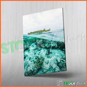 Canvas Prints Single Panels (Deep Sea) – 18×24, 40×40, etc.