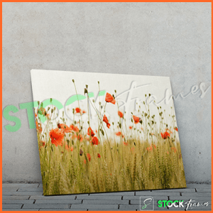 Canvas Prints Single Panels (Flowers 2) – 18×24, 40×40, etc.