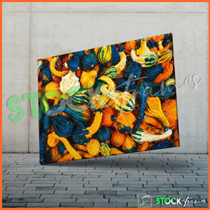 Canvas Prints Single Panels (Garden Fruits) – 18×24 etc.
