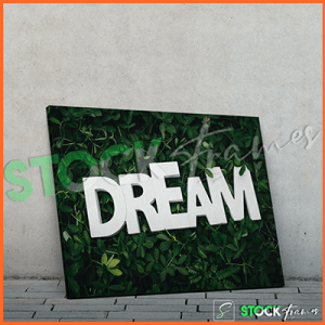 Canvas Prints Single Panels (Dreams) – 18×24 etc.