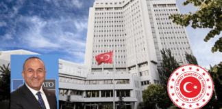 Cavusoglu and Turkish MFA
